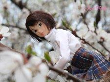 Momoko Dash! After School 5